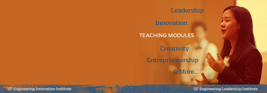 Teaching Modules offered by EII and ELI Institutes