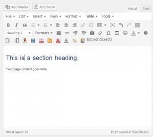 The content edit window in WordPress