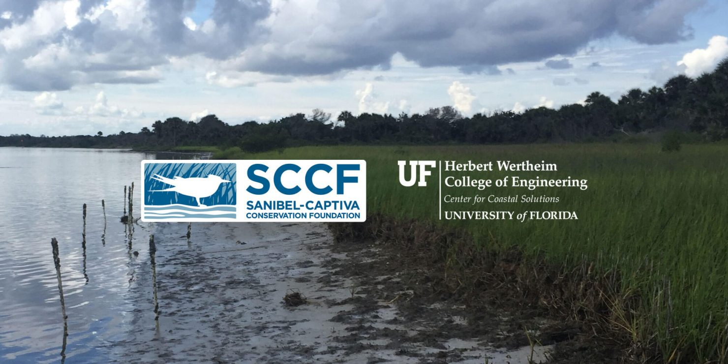 SCCF and CCS logos superimposed over a photograph of a Florida marsh