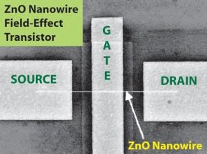 ZnO Nanowire