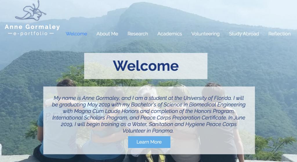 Screenshot of ePortfolio of past participants